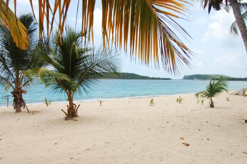 One of Vieques' secluded, local beaches